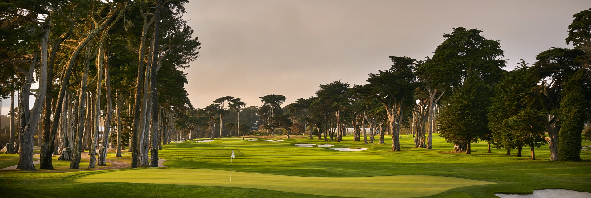 A view from the eighth hole of TPC Harding Park on October 2, 2018 in San Francisco, California